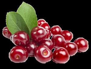 Sveže-višnje-slatko-ljuti-voćni-preliv